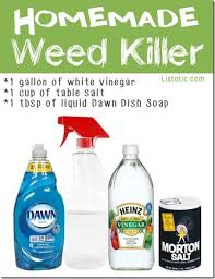 20 must save gardening tips weed killers homemade and gardens