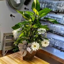 fort worth florist paynes florist gifts 216 photos 10 reviews florists 2201