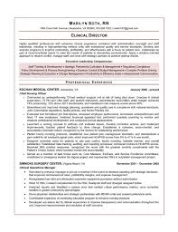 clinical manager resume executive resume sles