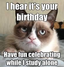 Grumpy Cat Meme Happy Birthday - 56 best grumpy cat birthday images on pinterest grumpy cat funny