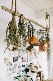 best 25 hanging pots ideas on pinterest hanging pots kitchen