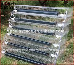 Backyard Quail Pens And Quail Housing by Layer Cage Assembling Tools Layer Cage Assembling Tools Suppliers