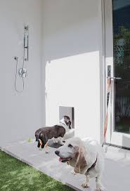 insulated dog house in patio contemporary with bathroom shower