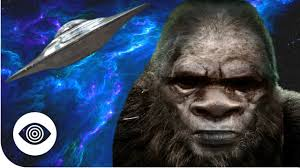 is bigfoot an alien youtube