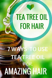 Tea Tree Oil Hair Loss 323 Best Essential Oils Images On Pinterest Essential Oil Blends