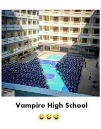 Funny Memes About School - vire high school funny meme funny memes