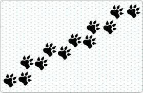 how to draw dog paw prints 7 steps with pictures wikihow