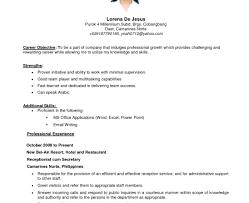 resume amazing summary for a resume impressive amazing