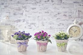 artificial forget me not flowers plants in basket home u0026 wedding
