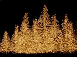 Christmas Tree With Optical Fiber Lights - white fiber optic christmas tree sale christmas lights decoration
