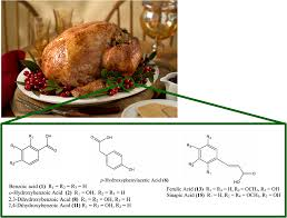 thanksgiving chemistry cranberries and your blood chembites
