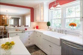 Thomasville Kitchen Cabinet Reviews Furniture Wonderful Ready To Assemble Cabinets Modern Kitchen
