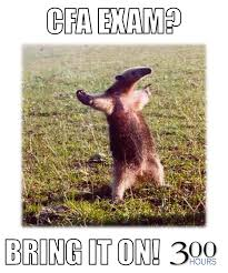 Anteater Meme - category fun 300 hours your guide to the cfa exams