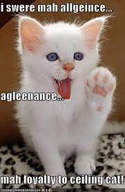 Ceiling Cat Meme - i swere mah allgeince agleenance mah loyalty to ceiling cat
