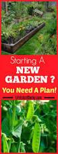 small backyard vegetable garden designs the gardening ideas for