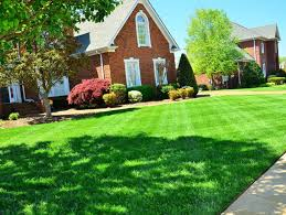 Landscaping Lawn Care by Lawn Care Sanford Nc Green Garden Landscaping Lawn Care Sanford Nc