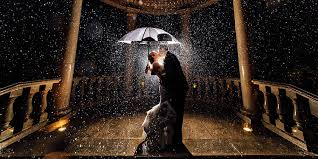 Wedding Photographs 25 Must See Wedding Photos From 2014 Huffpost