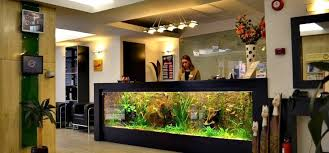 Hotel Reception Desk Cool Fish Tank Reception Desk The Aquarium Reception Desk At The