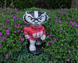 of wisconsin bucky badger statue
