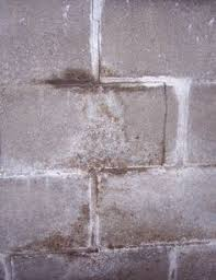 how to repair basement wall cracks how to get rid of mold before exterior painting basements