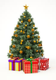 Decorated Christmas Trees Delivered Uk by Christmas Trees Olney Alban Hill Nurseries Newport Pagnell