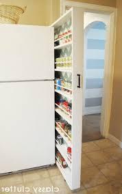 luxurious white hidden pantry for narrow kitchen design small