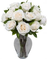Free Vase 1 Dozen Long Stem White Roses With Free Vase