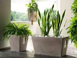 vasi in plastica da esterno complementi d arredo ermini mondo vasi