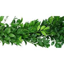greenery garland nagi garland florasourcedirect buy the box