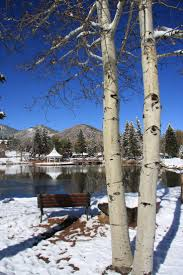Wildfire Telluride Co 36 best spread love like wildfire images on pinterest colorado