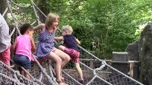 the bronx zoo july 27 2016 youtube