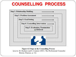 Counselling Skills And Techniques Counseling Process