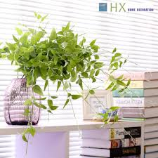 bonsai saule pleureur achetez en gros floraison saule pleureur en ligne à des grossistes