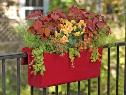 plant variety of outdoor containers to enhance the view