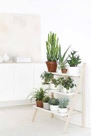 plante pour cuisine des plantes pour décorer une cuisine blanche