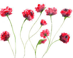 Watercolor Flowers - watercolor flower painting watercolor poppies black and