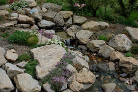 Rock Garden Perennials by Wild Ginger Farm News Blog Crevice Plants
