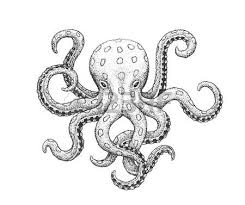 264 octopus image silhouette stock illustrations cliparts and