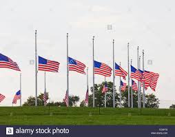 Why Are The Flags Flying Half Mast Row Of Us Flags Flying Half Staff Stock Photo Royalty Free Image