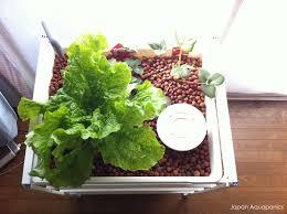117 best hydroponics u0026 aquaponics images on pinterest aquaponics