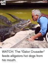 Gator Meme - 25 best memes about gators gators memes