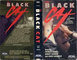 the black cat italy 1981 u2013 horrorpedia