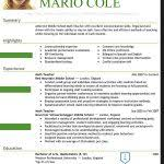 The Best Resume Templates What Is The Best Resume Template Gfyork Com