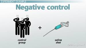 negative control definition u0026 experiment video u0026 lesson