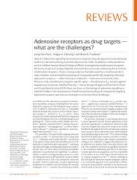 adenosine receptors as drug targets u2014what are the challenges pdf