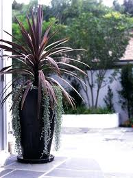 Garden Planters Ideas Large Potted Plant Garden Plant Containers The Best Large Outdoor