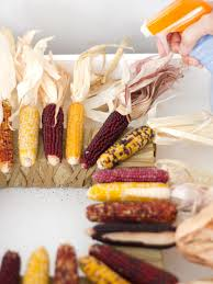 thanksgiving wreaths to make how to make a square corn husk wreath hgtv