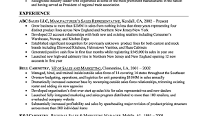 marketing resume summary examples ideal resume for someone making
