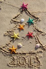 funny beach christmas tree decorated with the sea stars and shells