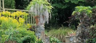 Botanical Gardens Seattle The Elisabeth C Miller Botanical Garden Seattle Wa